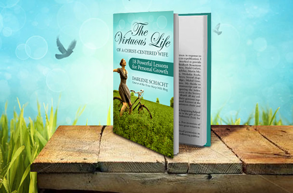 The Virtuous Life Book