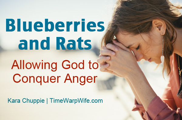 Blueberries and Rats (Allowing God to Conquer Anger)