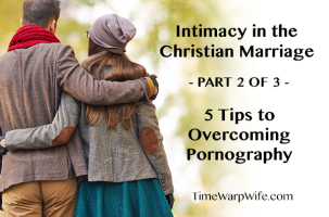 Intimacy in the Christian Marriage – Part 2 of 3 – 5 Tips to Overcoming Pornography