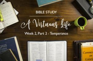 """""""A Virtuous Life"""" Bible Study – Week 2 – Recap"""