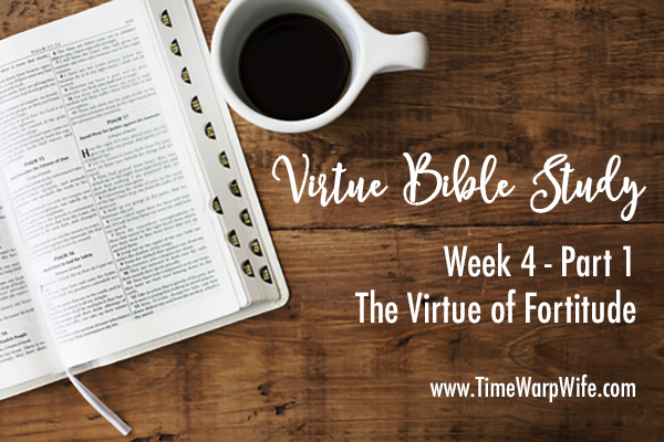 Bible Study – Week 4 – Part 1 – The Virtue of Fortitude
