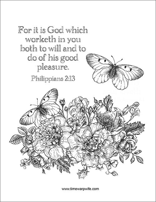 Bible Study Philippians Week 3 Part 1 Time Warp Wife