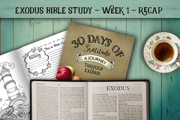 Exodus Bible Study – Week 1 – Recap