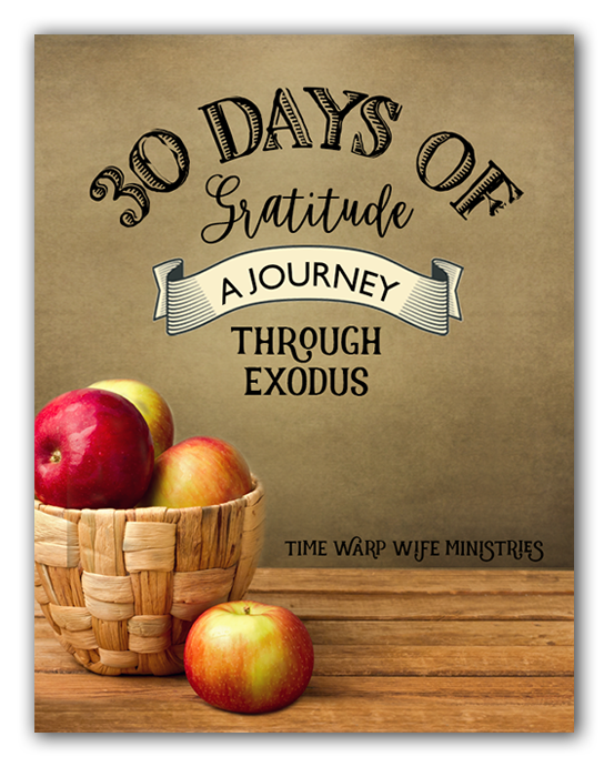 30 Days of Gratitude: A Journey Through Exodus - FREE Study