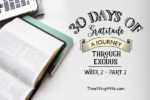 Exodus Bible Study – Week 2 – Recap