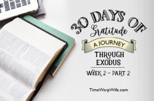 Exodus Bible Study – Week 2 – Recap