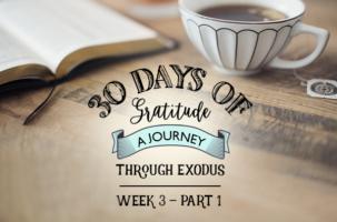 Exodus Bible Study – Week 3 – Part 1