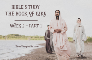 Bible Study – The Book of Luke – Week 2 – Part 1