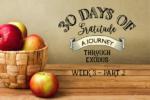 Exodus Bible Study – Week 3 – Part 2