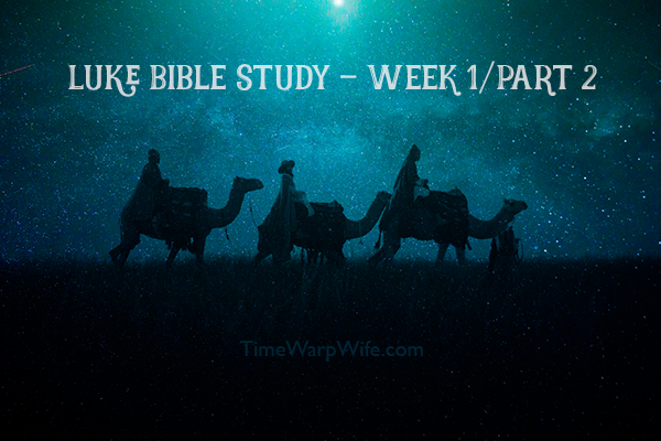 Luke Bible Study – Week One – Ch. 1-6