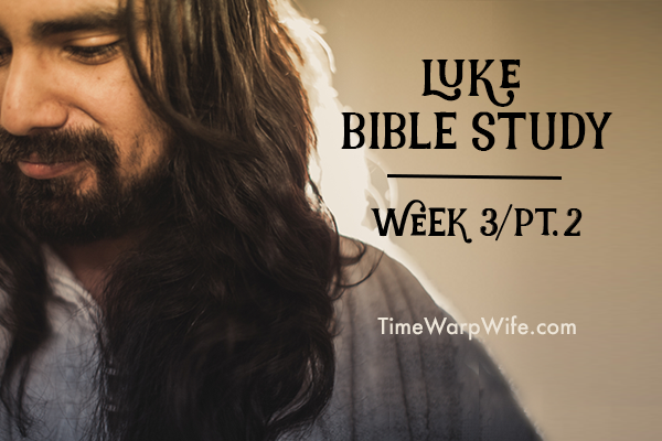 Luke Bible Study – Week 3 – Part 2 (Chapters 13-18)