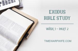 Exodus Bible Study – Week 1 – Part 2