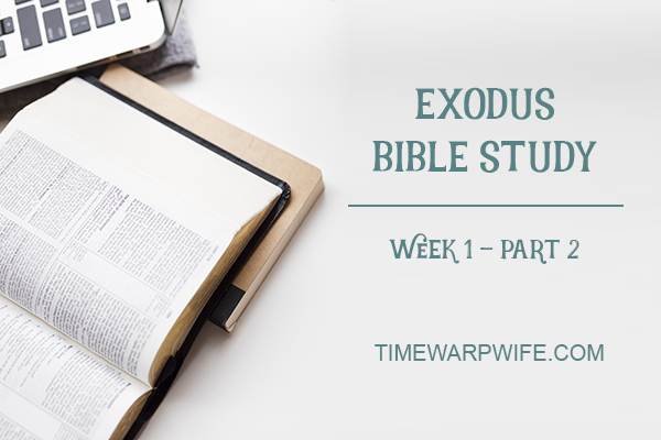Exodus Bible Study – Week 1 – Part 2