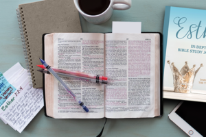 Esther Bible Study – FREE Bible Study Guide and Introduction