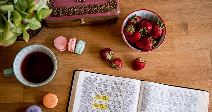 Bible Study Exodus 11-15 Weekly Intro