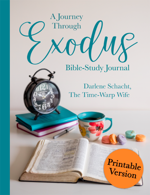 image regarding Printable Bible Study Guides named Exodus Bible Review - Cost-free Bible Research Direct and Arrival