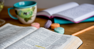 Faith & Provision Bible Study – Week 2, Part 2