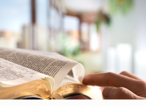 Daily Devotion – The Parable of the Lost Coin