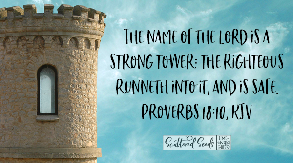 Daily Devotion – The Name of the Lord is a Strong Tower